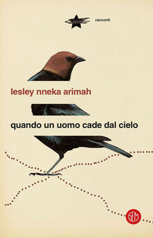 Quando un uomo cade dal cielo - Lesley Nneka Arimah,Tiziana Lo Porto - ebook