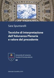 Tecniche di interpretazione dell'Adunanza Plenaria e valore del precedente - Sara Spuntarelli - copertina