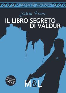 Il libro segreto di Valdur. Le nebbie di meteora. L'ottavo incarico - Diletta Nicastro - copertina