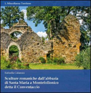 Sculture romaniche dall'abbazia di Santa Maria a Montefollonico