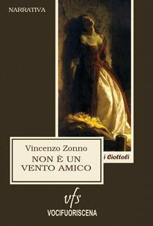 Non è un vento amico - Vincenzo Zonno - copertina