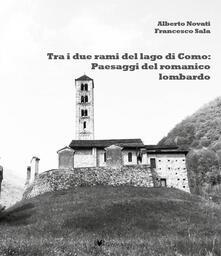 Tra i due rami del lago di Como: panorami del romanico lariano - Alberto Novati,Francesco Sala - copertina