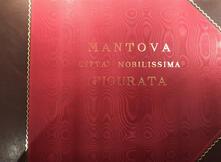Mantova città nobilissima figurata. Ediz. illustrata.pdf