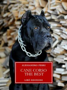 Cane corso. The best