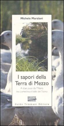 I sapori della terra di mezzo. A due passi da Milano tra Lomellina e valle del Ticino - Michele Marziani - copertina