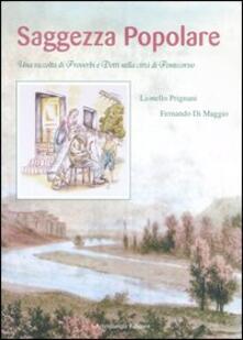 Saggezza popolare. Una raccolta di proverbi e detti nella città di Pontecorvo - Lionello Prignani,Fernando Di Maggio - copertina