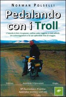 Pedalando con i troll. L'Islanda in bici, tra geyser, colline color ruggine, e cieli infiniti. Un cicloviaggiatore e le sue splendide foto di via ggio