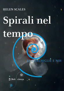 Voluntariadobaleares2014.es Spirali nel tempo. Le conchiglie e noi Image