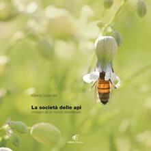 La società delle api. Immagini di un mondo staordinario. Ediz. italiana e inglese - Marina Gallandra - copertina