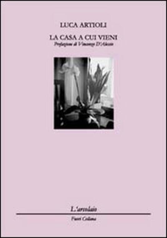 La casa a cui vieni - Luca Artioli - copertina