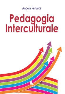 Antondemarirreguera.es Pedagogia interculturale Image