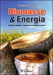 Libro Biomasse & energia. Conoscere, scegliere e trasformare le biomasse in energia Francesco Calza