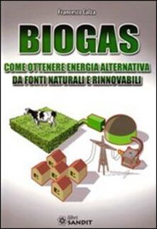 Biogas. Come ottenere energia alternativa.pdf