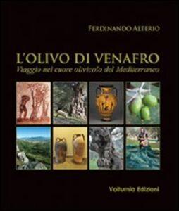 L' olivo di Venafro. Viaggio nel cuore olivicolo del Mediterraneo