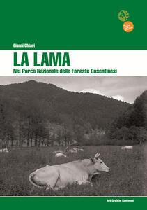 La Lama nel Parco Nazionale delle Foreste Casentinesi