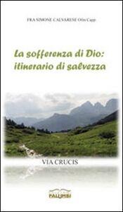 La sofferenza di Dio: itinerario di salvezza. Via Crucis