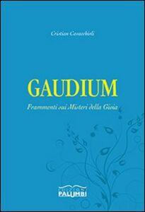 Gaudium. Frammenti sui misteri della gioia
