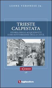 Trieste calpestata. Storia degli acquedotti e dei sotterranei della città