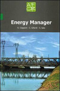 Energy manager. Ediz. italiana