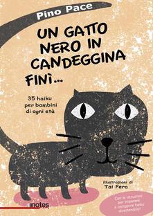 Winniearcher.com Un gatto nero in candeggina finì... 35 haiku per bambini di ogni età Image