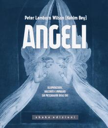 Angeli. Illuminazioni, racconti e immagini sui messaggeri - Peter L. Wilson - copertina