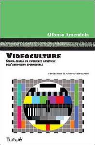 Videoculture. Storia, teorie ed esperienze artistiche dell'audiovisivo sperimentale