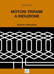 Motori trifase e induzione. Di piccola e media potenza.pdf