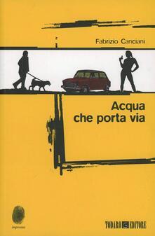 Acqua che porta via - Fabrizio Canciani - copertina