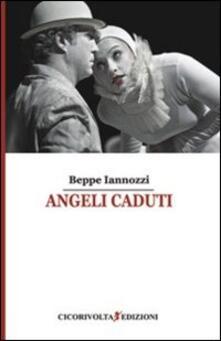 Angeli caduti - Giuseppe Iannozzi - copertina