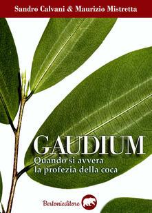 Gaudium. Quando si avvera la profezia della coca - Sandro Calvani,Maurizio Mistretta - copertina