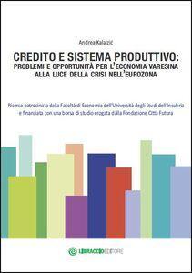 Credito e sistema produttivo. Problemi e opportunità per l'economia varesina alla luce della crisi nell'eurozona