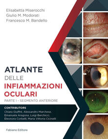 Atlante delle infiammazioni oculari. Vol. 1: Segmento anteriore. - Elisabetta Miserocchi,Giulio M. Modorati,Francesco M. Bandello - copertina