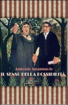 Il senso della possibilità - Antonio Spagnuolo - copertina