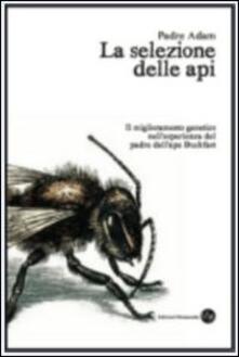 Ascotcamogli.it La selezione delle api. Il miglioramento genetico nell'esperienza del padre dell'ape Buckfast Image