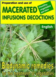 Preparation and use of macerated, infusions, decoctions. Biodynamic remedies for the treatment of vegetables