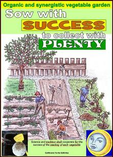 Sow with success to collect with plenty. Organic and synergistic vegetable garden