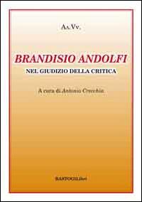 Brandisio Andolfi nel giudizio della critica
