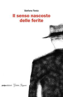 Il senso nascosto delle ferite - Stefano Testa - copertina
