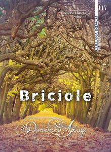 Briciole - Domenico Alagi - copertina