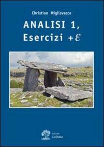 Analisi matematica. Esercizi + E. Vol. 1