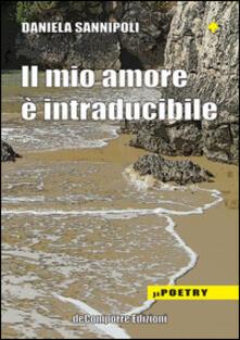 Il mio amore è intraducibile - Daniela Sannipoli - copertina