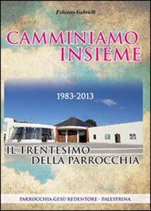 Camminiamo insieme. Il trentesimo della parrocchia (1983-2013)