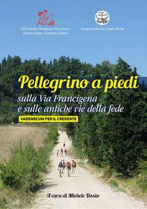 Pellegrino a piedi sulla via Francigena e sulle antiche vie delle fede. Vademecum per il credente
