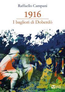 1916. I bagliori di Doberdò