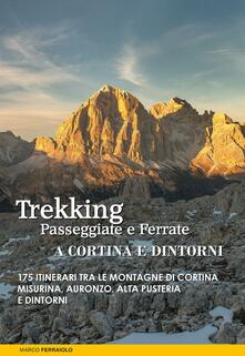 Tegliowinterrun.it Trekking, passeggiate e ferrate a Cortina e dintorni. 175 itinerari tra le montagne di Cortina, Misurina, Auronzo, Alta Pusteria e dintorni Image