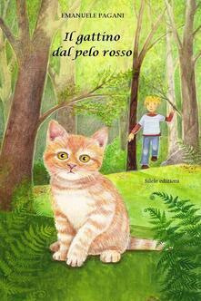 Ipabsantonioabatetrino.it Il gattino dal pelo rosso Image