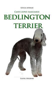 Ristorantezintonio.it Bedlington Terrier Image