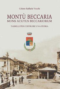 Montù Beccaria. Mons Acutus Beccariorum. Tasselli per costruire una storia