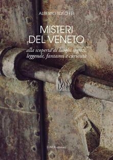 Misteri del Veneto. Alla scoperta di luoghi segreti, leggende, fantasmi e curiosità - Alberto Toso Fei - copertina