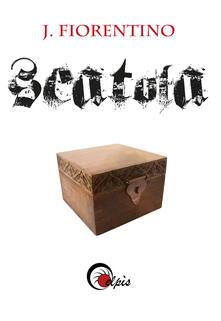 Camfeed.it Scatola Image